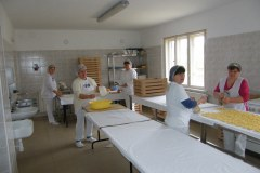 Tésztagyártás